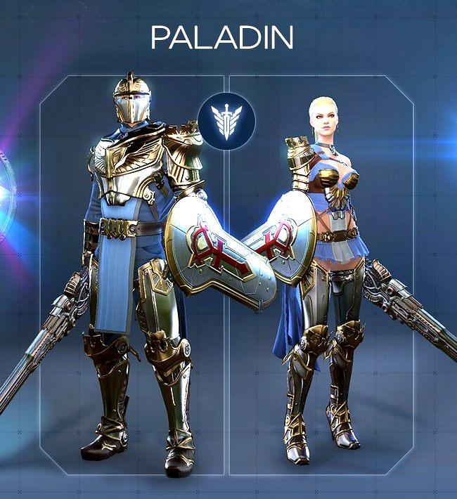 Paladin2