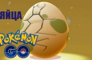 яйца в покемон го