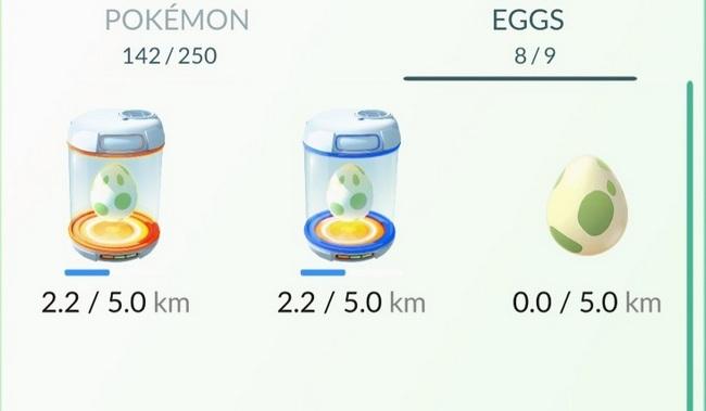 яйца хранилище